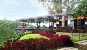 Boh Tea Centre - Cameron Highlands - Pahang Tourist Attractions